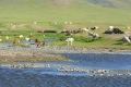 mongolei-3-068a