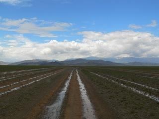 mongolei-3-265a
