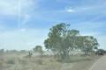 australien-5-028a