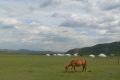 mongolei-2-056a