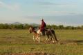 mongolei-2-100a