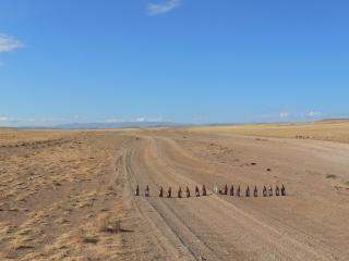 mongolei-3-217a